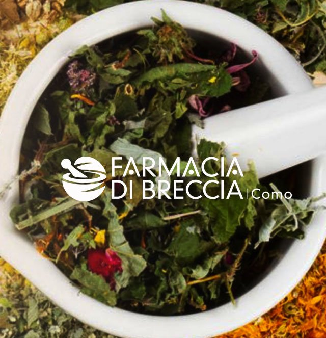FARMACIA DI BRECCIA // WEB LAYOUT PROJECT