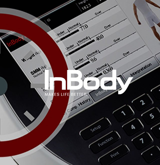 INBODY // WEB LAYOUT PROJECT